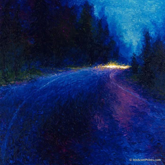 3623822_night_driving_iris_scott_1 (700x700, 126Kb)