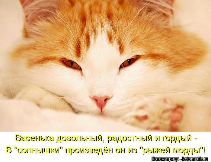 kotomatritsa_Ra (700x537, 230Kb)