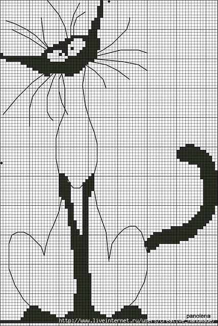 Схема вышивки: прикольный кот