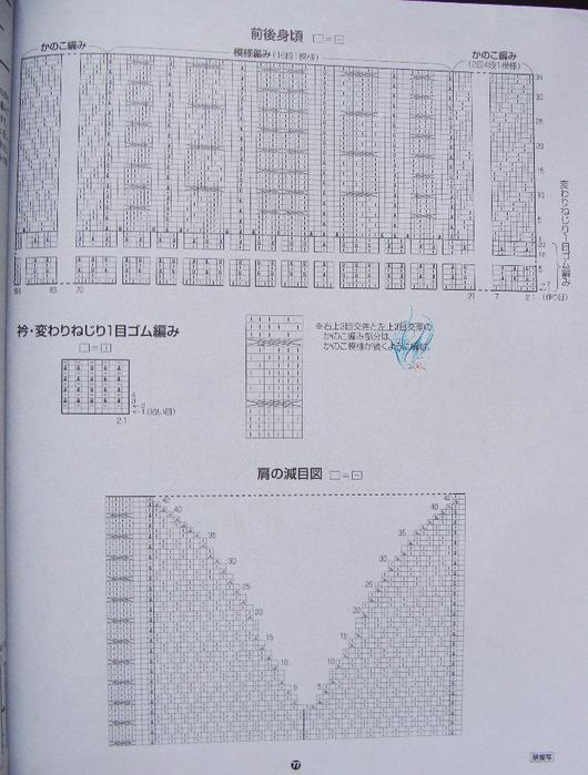 DSC06648 (530x700, 435Kb)