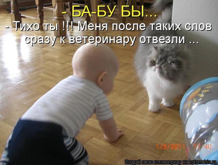 kotomatritsa_qk (700x532, 242Kb)