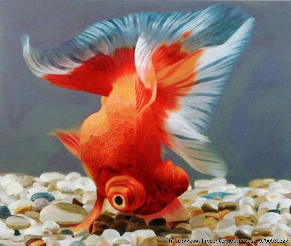 золотая рыбка(шелком)китай (600x507, 171Kb)