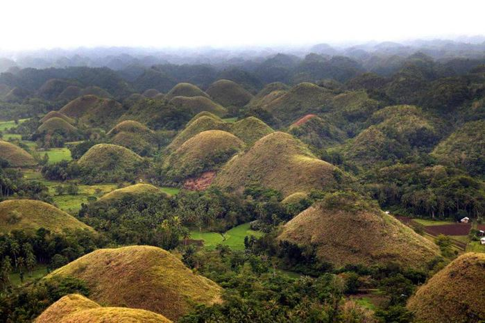 Chocolate-Hills (700x465, 65Kb)