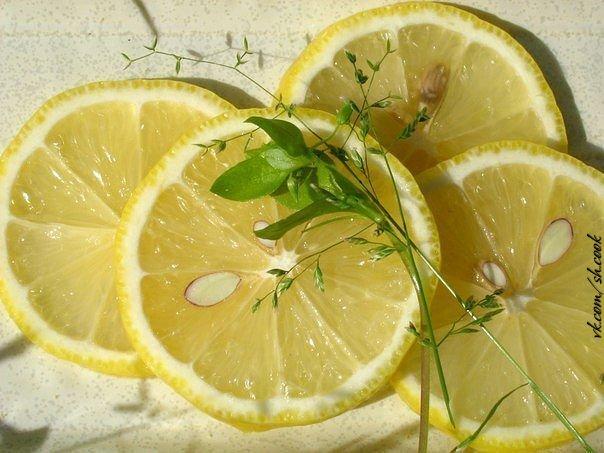 лимон (604x453, 59Kb)