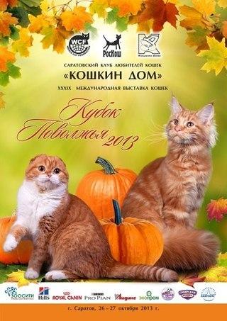 Кубок Поволжья - 2013