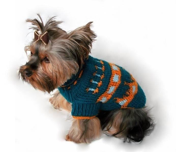 Вязанье для собачек (2) (692x600, 125Kb)