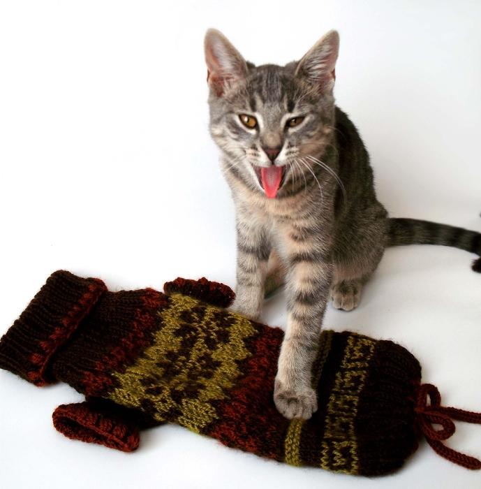 Вязанье для собачек (11) (689x700, 253Kb)