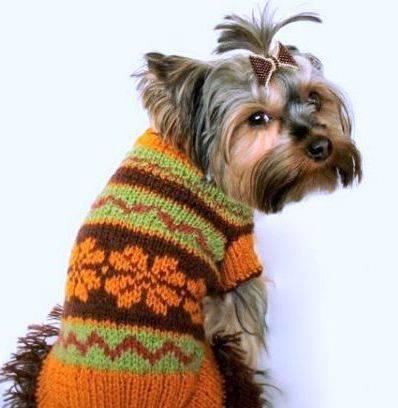 Вязанье для собачек (33) (398x408, 74Kb)