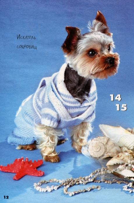 вязаная одежда для собачек (2) (460x699, 275Kb)