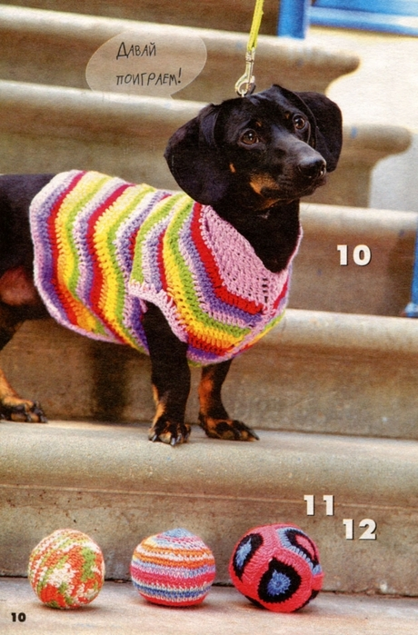 вязаная одежда для собачек (12) (460x699, 293Kb)