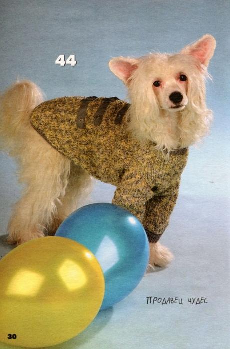 вязаная одежда для собачек (26) (460x699, 257Kb)