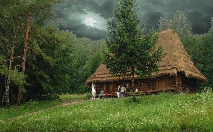 дом в лесу фото (700x433, 259Kb)