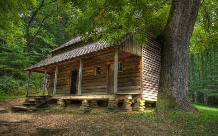 дом в лесу фото 1 (700x437, 283Kb)