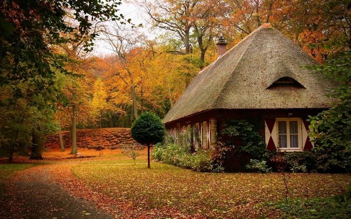 дом в лесу фото 9 (700x437, 316Kb)
