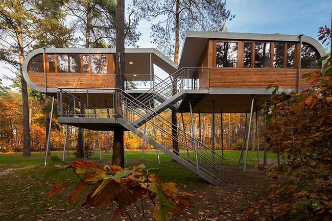дом в лесу фото 10 (650x433, 231Kb)