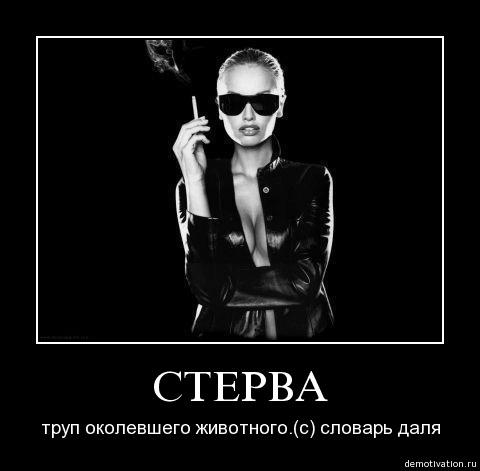 2447247_sterva (480x471, 23Kb)
