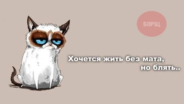 Pks4_vwb3YY (604x340, 43Kb)
