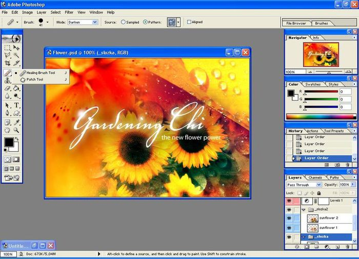 adobe_photoshop_cs3_extended (700x505, 74Kb)
