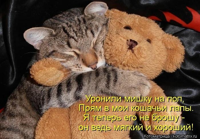 kotomatritsa_Qi (700x489, 291Kb)