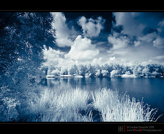 3925073_www_fotoflip_ru_12_sposobov_raznoobrazit_vashi_foto (320x262, 44Kb)