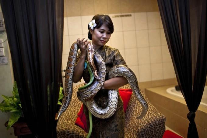 массаж змеями фото 7 (680x453, 140Kb)