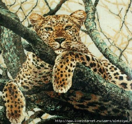 StitchArt-leopard1 (453x427, 211Kb)
