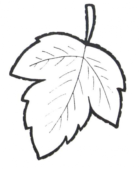 Мастер класс рукоделие Листья из лент