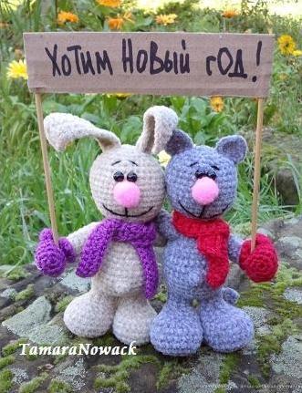 заяц и кот - Самое интересное