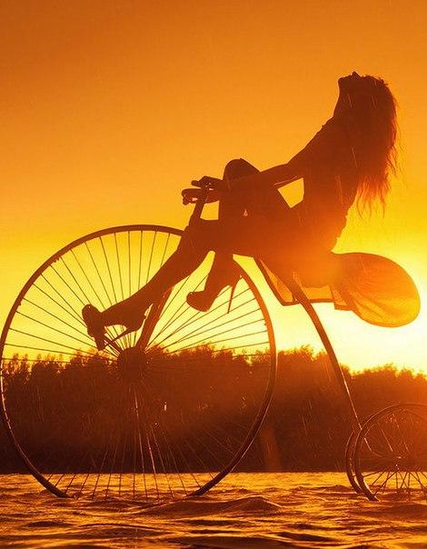 велосипед юмор