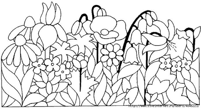 Blumenwiese (700x378, 220Kb)