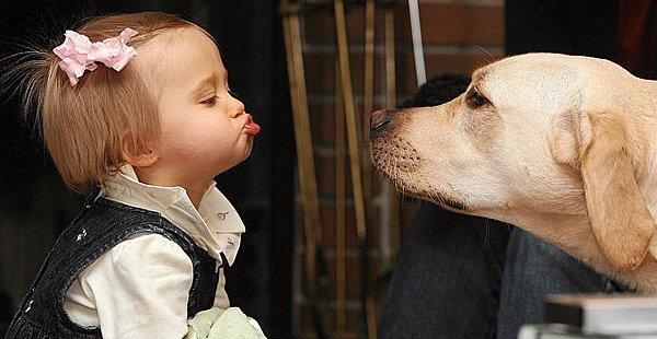 девочка и собака (600x310, 48Kb)