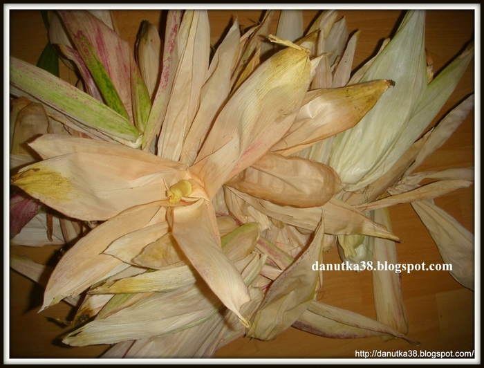 цветы из тыквенных семечек и листьев кукурузы (4) (700x532, 270Kb)