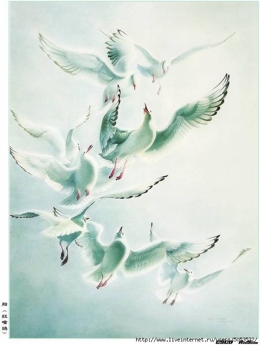 Мир птиц художника Зенг Ксяо 3 (527x700, 210Kb)
