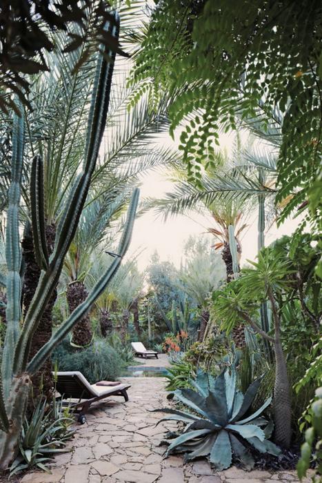 экзотический отель фото 10 (467x700, 481Kb)