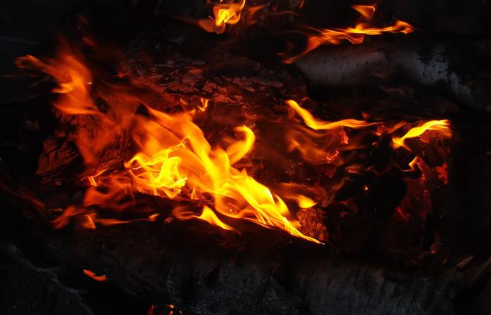 Пламя/1415502_DSC00046_kopiya (700x448, 97Kb)