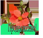 4809770_Yaprodoljenie (150x131, 26Kb)