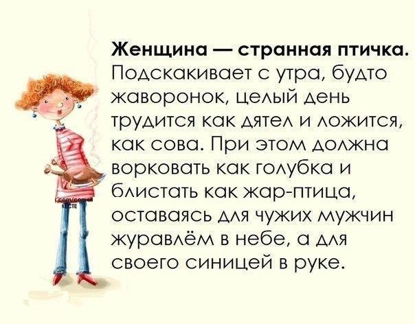 3875377_bYBYjK7aUOo (604x472, 55Kb)