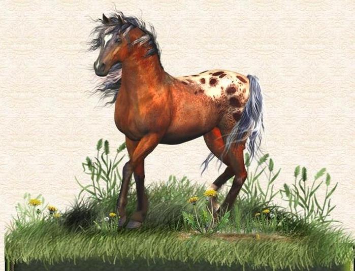 лошадь (700x534, 280Kb)