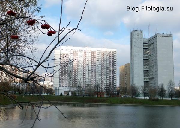 Природа в городе/3241858_priroda4 (600x428, 187Kb)