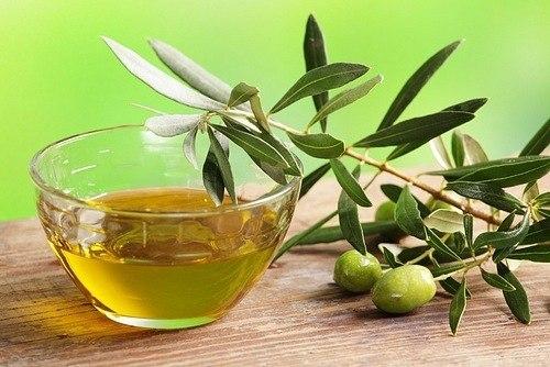 оливковое масло (500x334, 50Kb)
