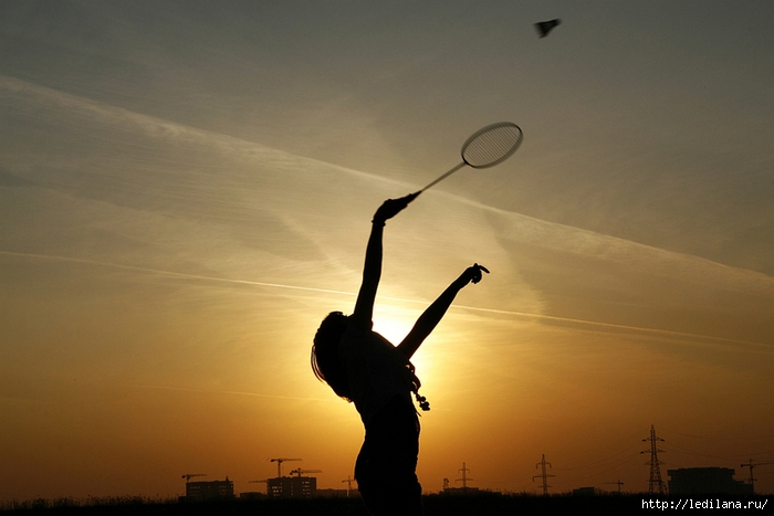 3925311_badminton (700x467, 190Kb)