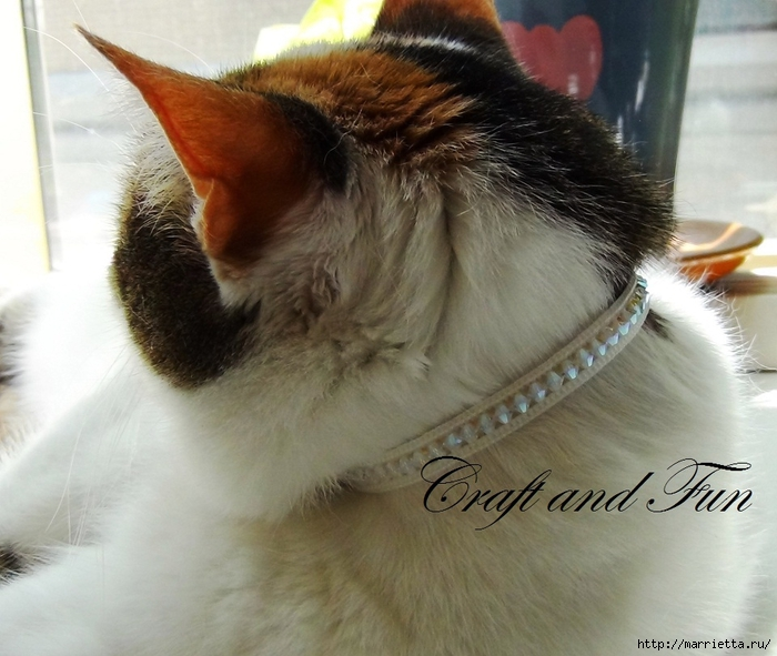 Гламурный ошейник для кошки. Из молнии и бусин-кристаллов Swarovski (19) (700x591, 269Kb)