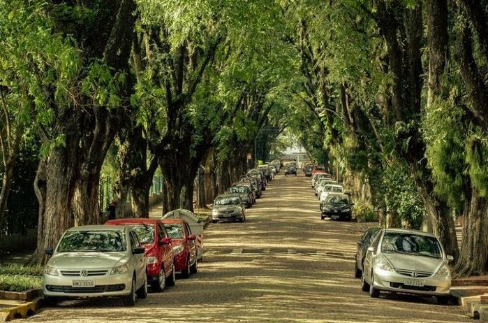 Руа Гонсалу де Карвальо фото 5 (700x462, 441Kb)