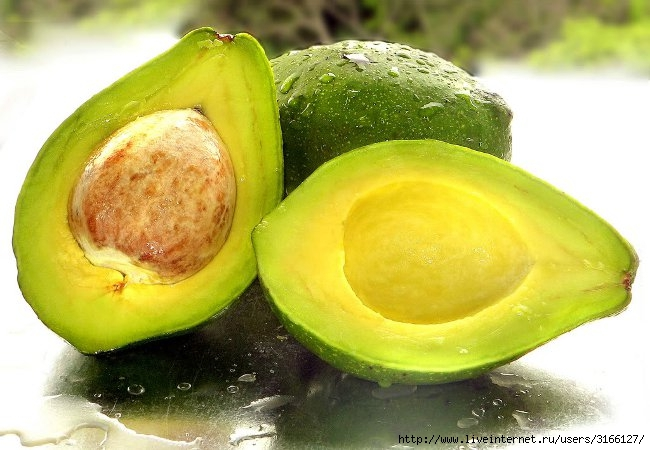 avocado-choice_big (650x450, 172Kb)
