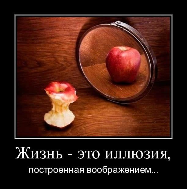 1313088655-zhizn-yeto-illyuziya (612x618, 81Kb)