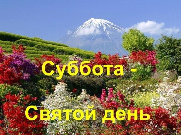 4582585_x_473d81a3 (600x450, 129Kb)