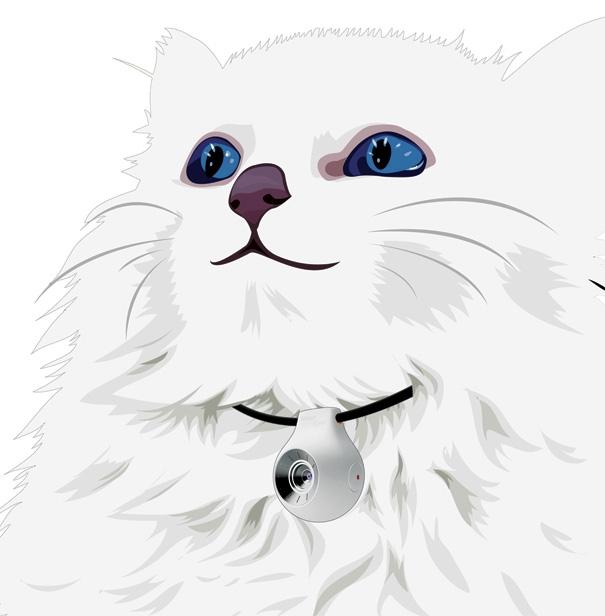 pet_vision (605x616, 91Kb)