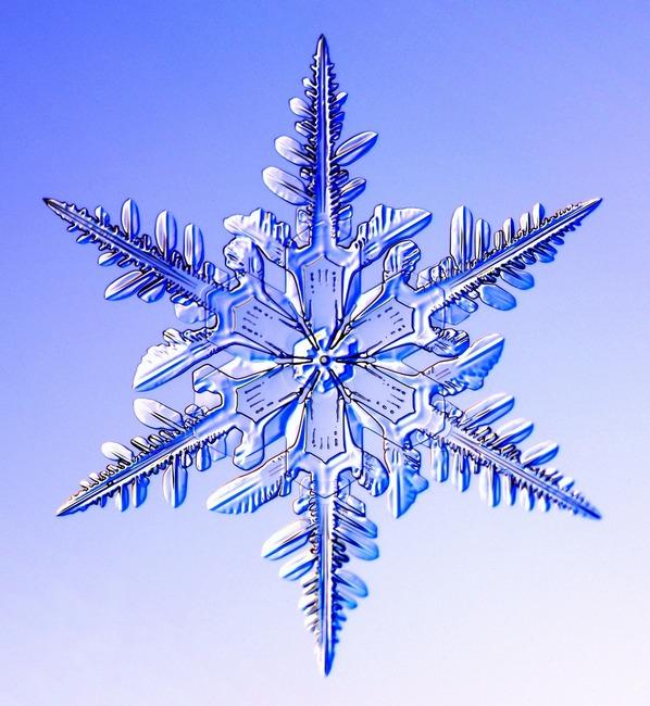 снежинка (598x650, 391Kb)