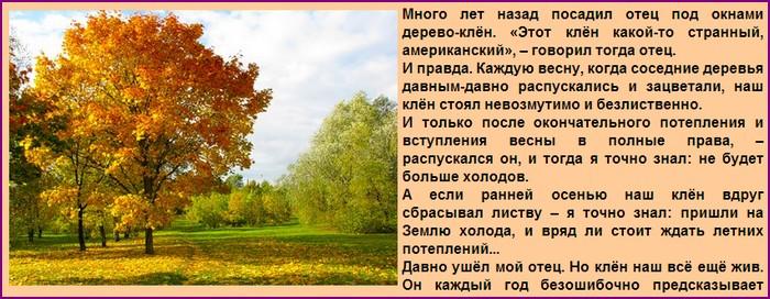 3726295_20131108_125748_1_ (700x272, 105Kb)