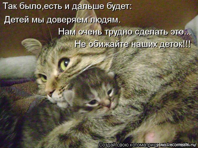 1382543484_kotomatritsa_1w (640x480, 210Kb)